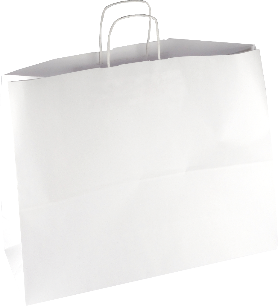 PS218G002 Papiertasche mit Papierkordel EKO PLUS weiß glatt